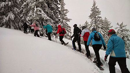 Group-Snowshoeing