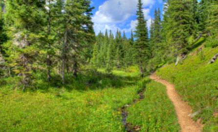 Ptarmigan Trailhead Colorado.jpg