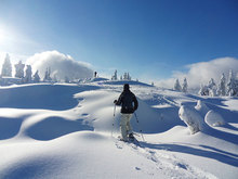 Try Something a Little Different This Winter by Snowshoeing Through Summit County
